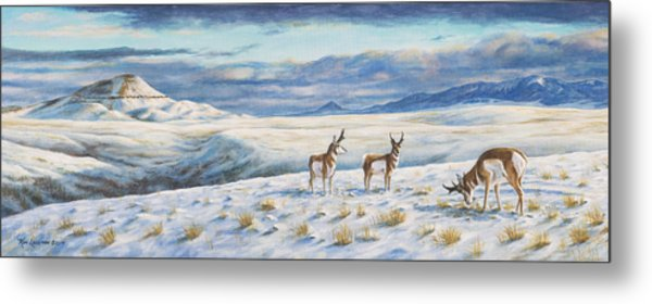Belt Butte Winter Metal Print