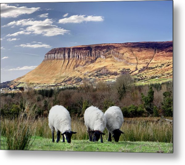 Benbulben, Co. Sligo - Sheep Grazing At The Base Of The Mountain On A Sunny Spring Day Metal Print