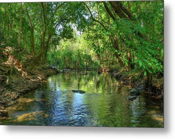 Berry Springs Metal Print