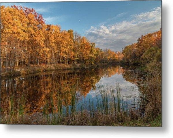 Beyer's Pond In Autumn Metal Print