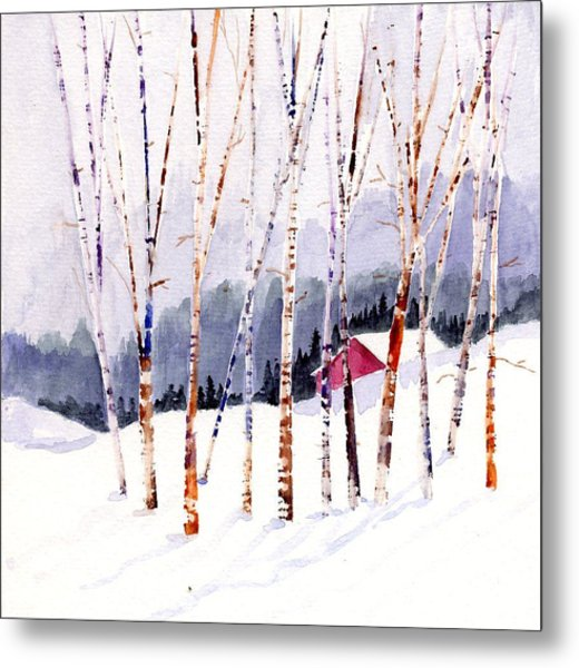 Beyond The Birch Thicket Metal Print