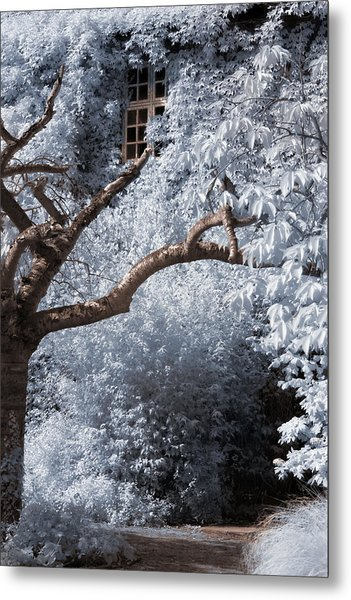 Metal Print featuring the photograph Beyond The Silver Tunnel by Helga Novelli