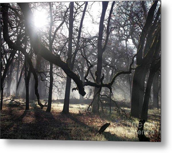 Bidwell Park Sunrise Metal Print by Richard Verkuyl