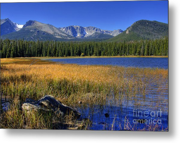 Bierstadt Lake Shoreline 2 Metal Print