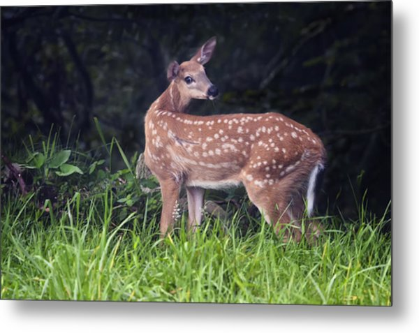 Big Bambi Metal Print