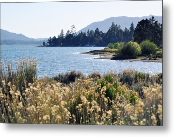 Big Bear Lake Shoreline Metal Print