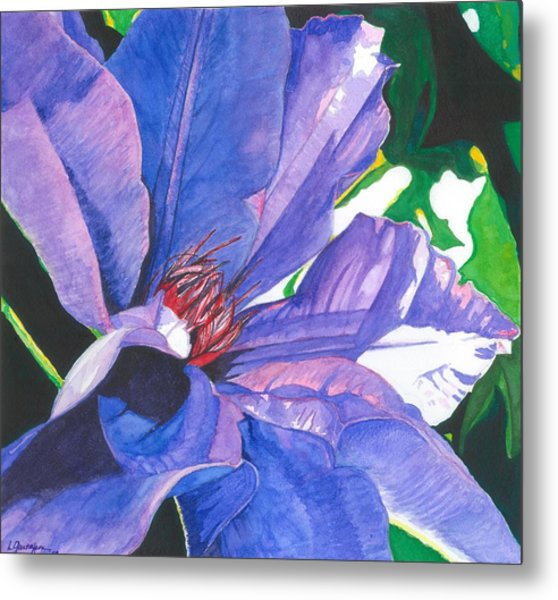 Big Blue Clematis Metal Print by Leslie Gustafson