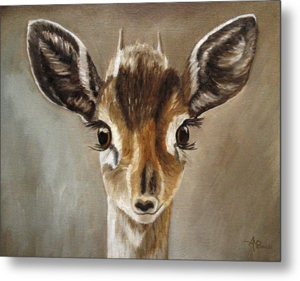 Big Eyes Dik-dik Metal Print