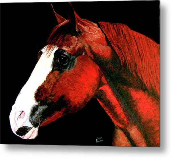 Big Red Metal Print by Stan Hamilton