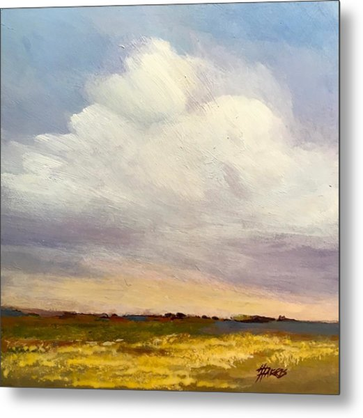 Metal Print featuring the painting Big Sky by Helen Harris