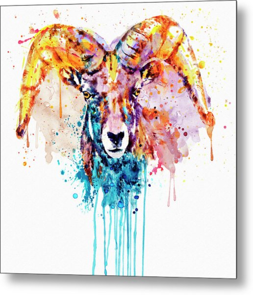 Bighorn Sheep Portrait Metal Print