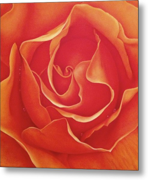 Biltmore Rose Metal Print