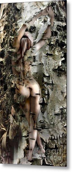 Birch Beauty Metal Print