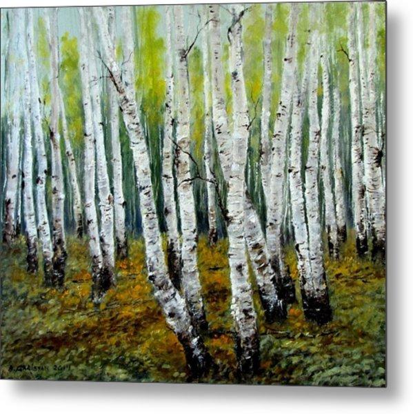 Birch Trail Metal Print