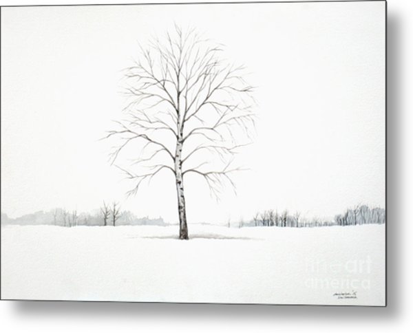 Birch Tree Upon The Winter Plain Metal Print