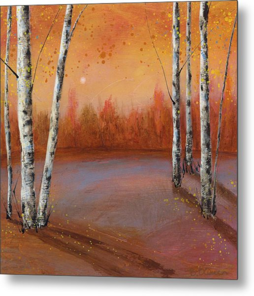 Birches In The Fall Metal Print