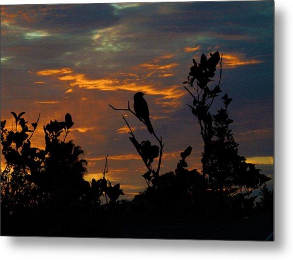 Bird At Sunset Metal Print