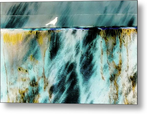 Bird At The Abstract Fountain Metal Print