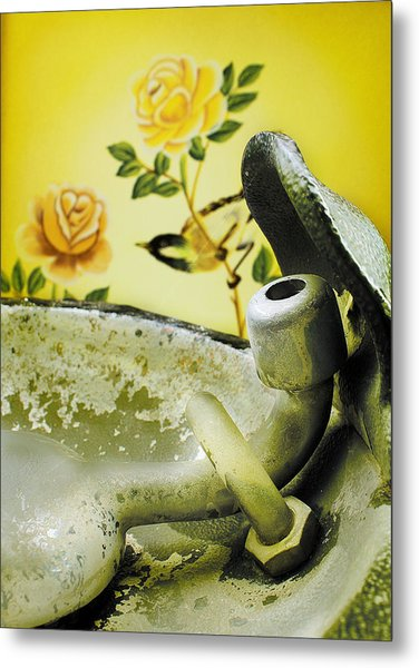 Bird Behind A Fountain II Metal Print