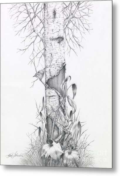 Bird In Birch Tree Metal Print