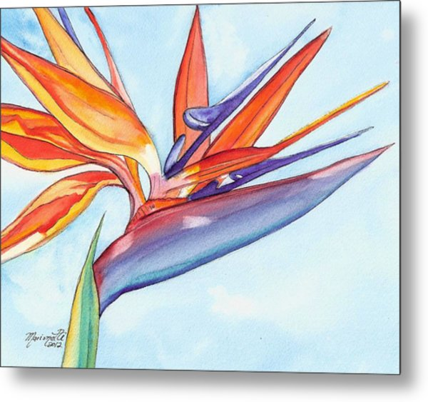 Bird Of Paradise IIi Metal Print