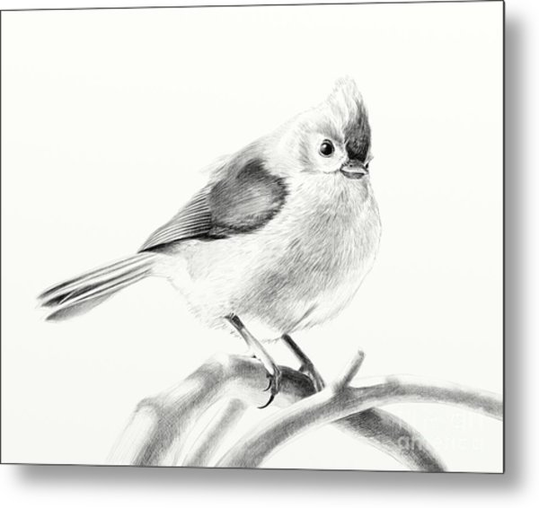 Bird On A Branch Metal Print