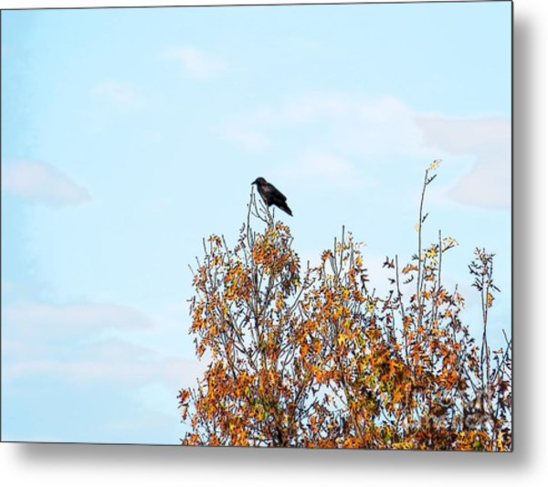 Bird On Tree Metal Print