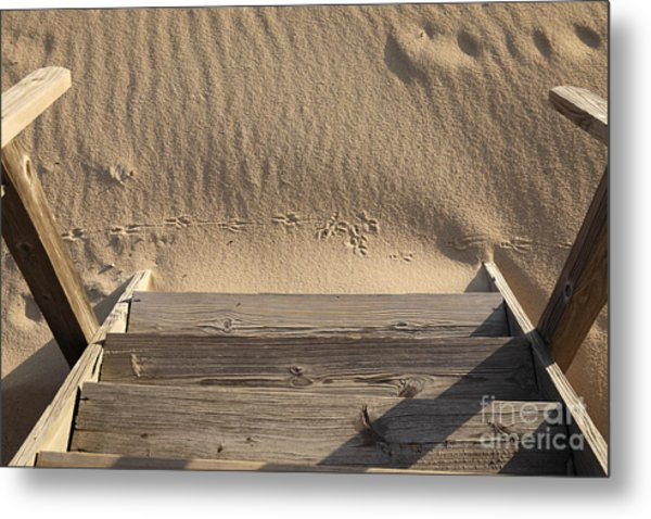 Bird Prints In The Sand Metal Print by Bryan Attewell