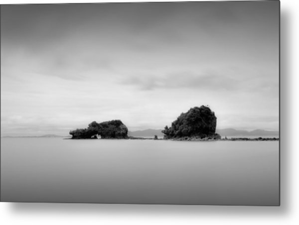 Bird Rock Metal Print