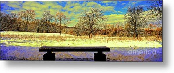 Bird Watchers Bench Winter Crabtree Nature Center Cook County Il Metal Print