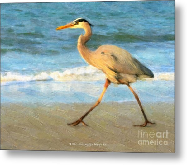 Bird With A Purpose Metal Print