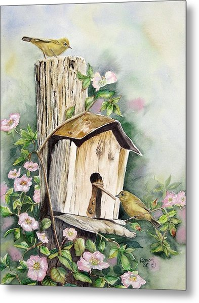 Birdhouse Buddies Metal Print