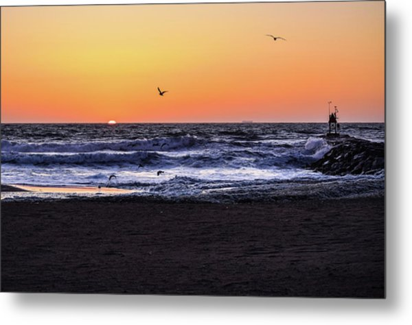 Birds At Sunrise Metal Print
