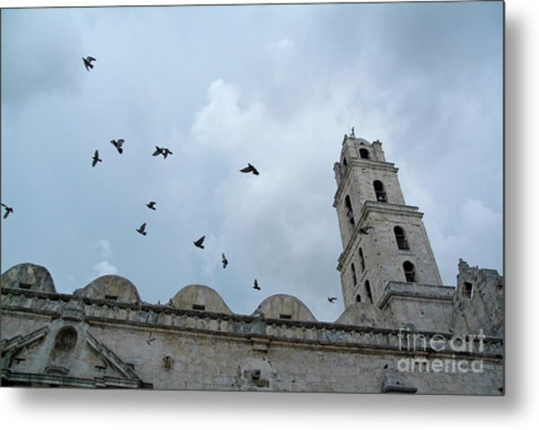 Birds Flying Above The Basilica And The Monastery Of Saint Francis Of Assisi Metal Print by Sami Sarkis
