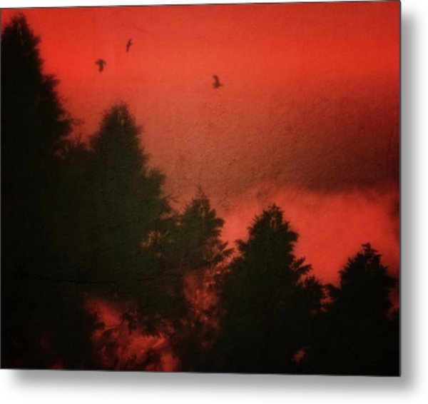 Metal Print featuring the photograph Birds In A Red Sky by Jan Keteleer