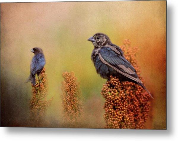 Birds In The Milo Crop Metal Print