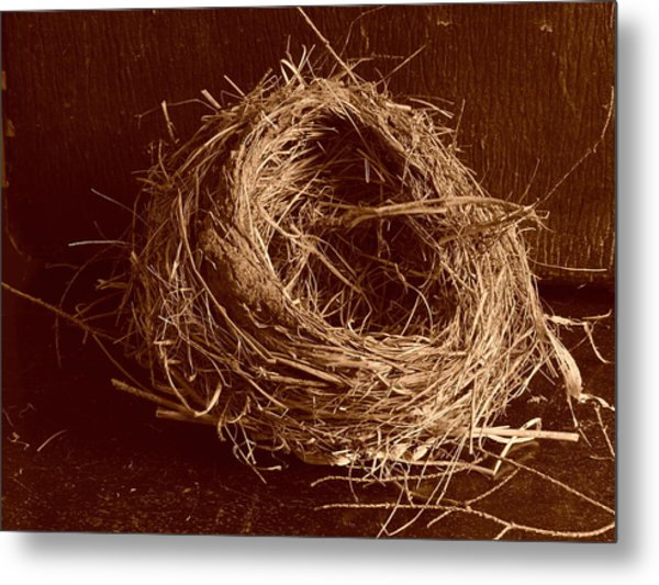 Bird's Nest Sepia Metal Print