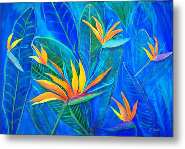 Birds Of Paradise In Florida Metal Print