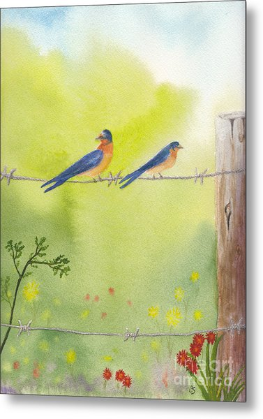 Birds On A Wire Barn Swallows Metal Print