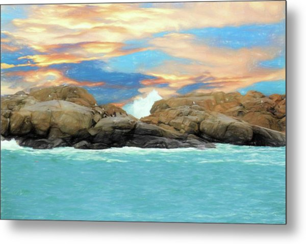 Birds On Ocean Rocks Metal Print