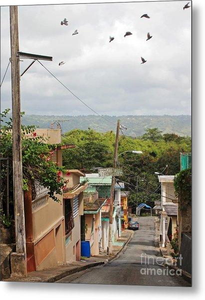 Birds Over Yabucoa Metal Print