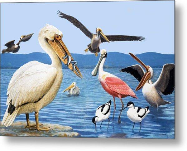 Birds With Strange Beaks Metal Print