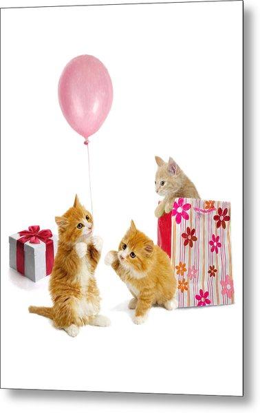Birthday Kitties Metal Print