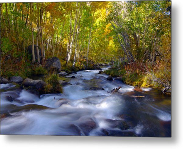 Bishop Creek In Fall Eastern Sierra Photograph Metal Print