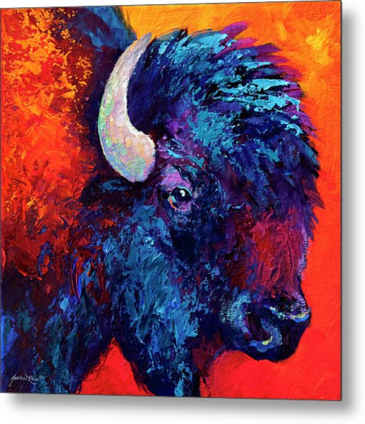 Bison Head Color Study II Metal Print