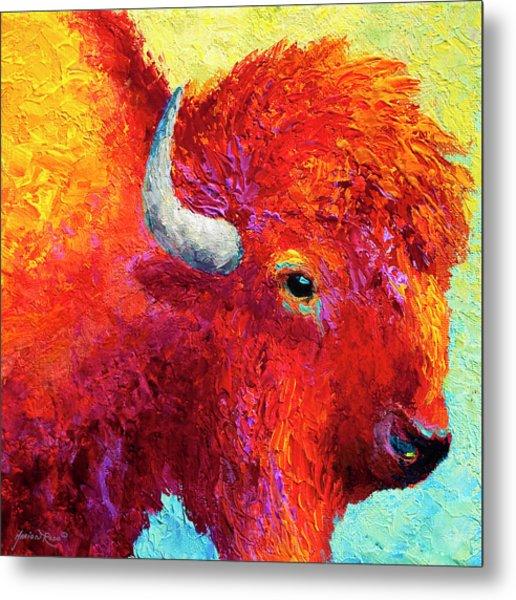 Bison Head Color Study Iv Metal Print