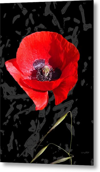 Black And Red Poppy Metal Print by Martine Affre Eisenlohr