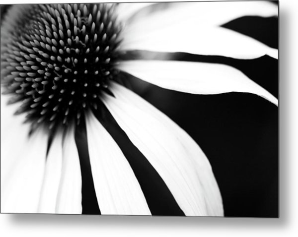 Black And White Flower Maco Metal Print