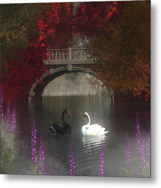 Black And White Swans Metal Print