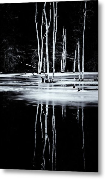 Black And White Winter Thaw Relections Metal Print
